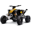 CAN-AM DS 450EFI / DS 450 XMX